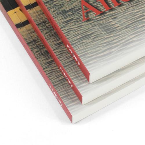 ejemplo de lomo de libros encolados de texto al mejor precio de impresión