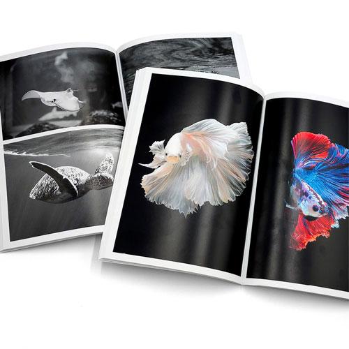 Fotolibros impresos en color y en blanco y negro con encuadernación encolada o cosida
