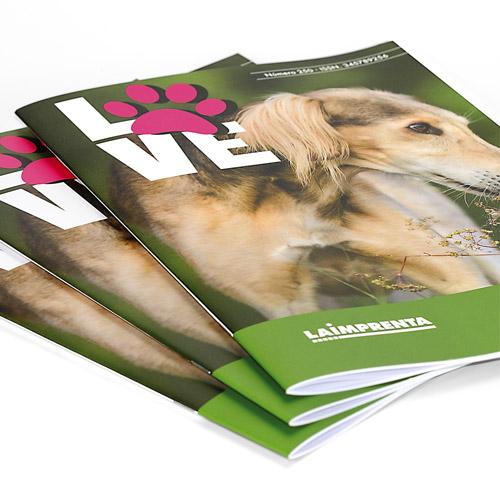 hacer revistas baratas sin portada